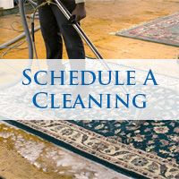Schedule A Cleaning