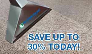 Save up to 30% Cleaning coupon