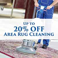 Up to 20% off area rug cleaning